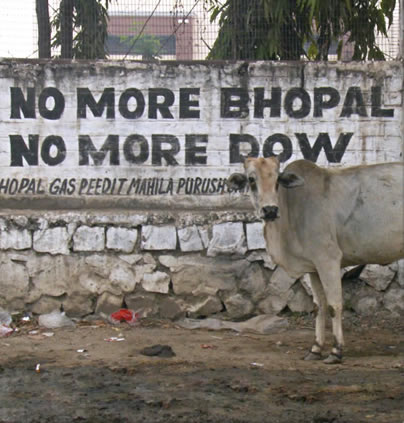 Bhopal disaster victims may never get compensation following Dow-DuPont merger, fears UN official